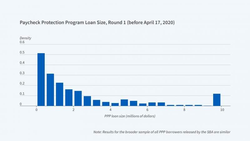 PPP Loan size-01.jpg